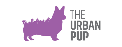 The-Urban-Pup-Daycare-Galway